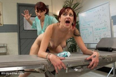 Kink_com- Pre med student_s virgin ass gets punished and fucked to get into medical university!