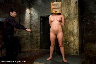 Kink.com - The Training of Harmony Rose, Day Two