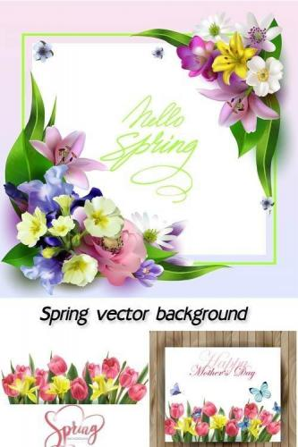 Spring vector background with flowers