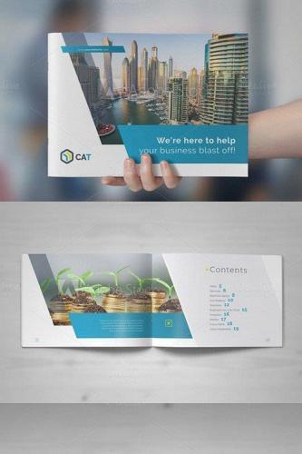 Business Brochure - Landscape Vol. 1