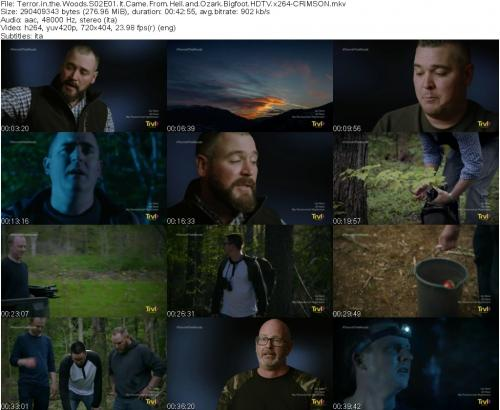 153259706_terror-in-the-woods-s02e01-it-came-from-hell-and-ozark-bigfoot-hdtv-x264-crimson.jpg