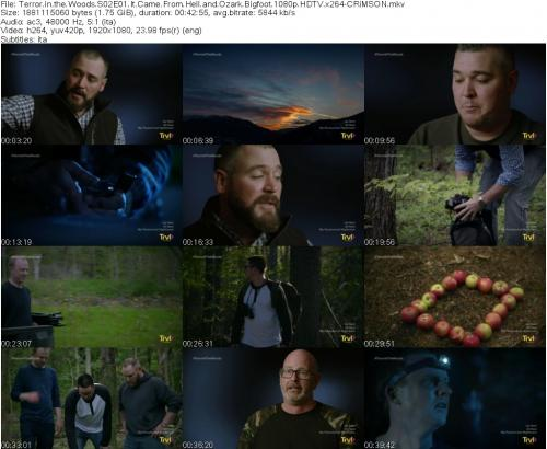153261088_terror-in-the-woods-s02e01-it-came-from-hell-and-ozark-bigfoot-1080p-hdtv-x264-c.jpg