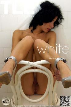 Metartvip- White