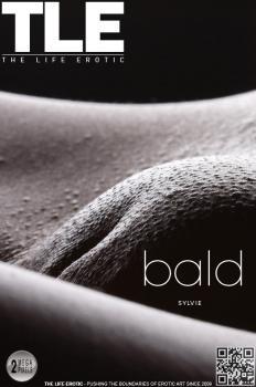 Metartvip- Bald
