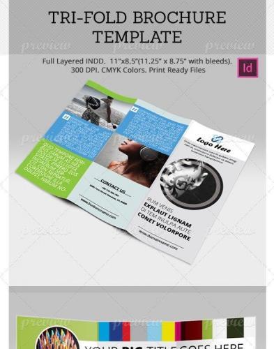 Tri-fold Brochure Template 2049