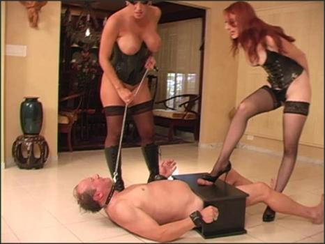 Clubdom.com- Trample box torture