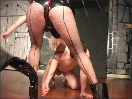 Clubdom.com- Hungry for ballbusting