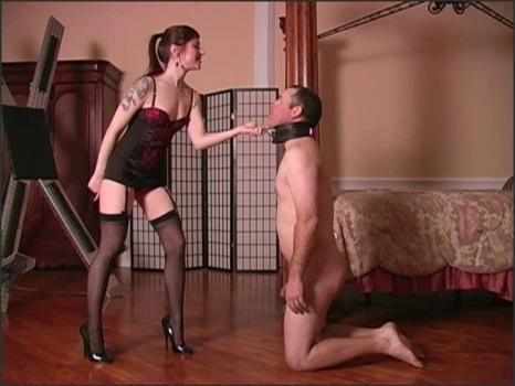 Clubdom.com- Mistress is angry