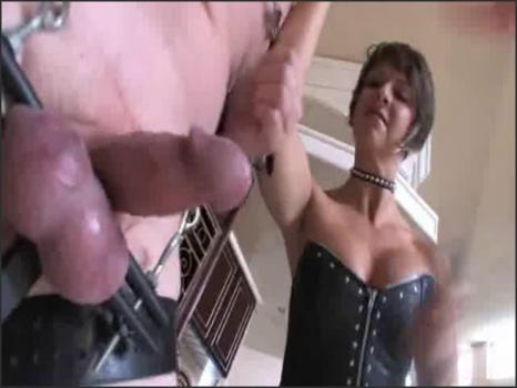 Clubdom.com- Bruised Cock and Battered Balls