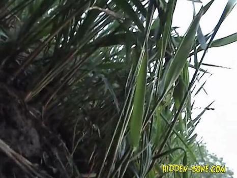 Hidden-Zone.com- Sp1056# Spy cam video